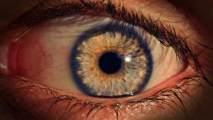 eye-1841395_1920